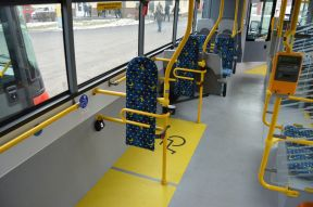 Step-free Access on the Transport